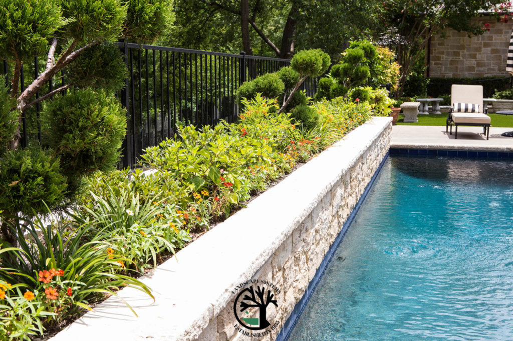 Making Your Backyard An Oasis Pool Landscaping Design Keller